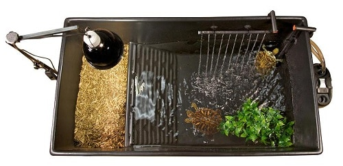 Zoo Med Turtle Tub Kit Review Should You Invest On It