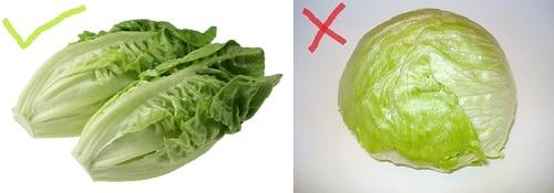 romanian lettuce vs iceberg lettuce