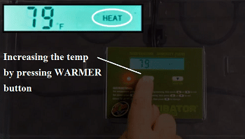 zoo med reptibator temperature adjustment