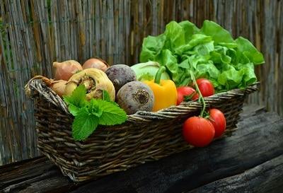 vegetables for red eared sliders