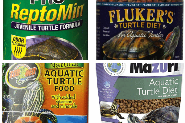 Commercial Food Items To Feed A Map Turtle