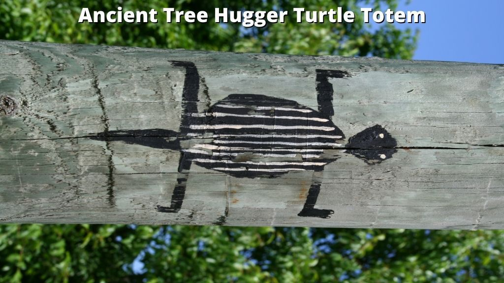 Ancient Tree Hugger Turtle Totem